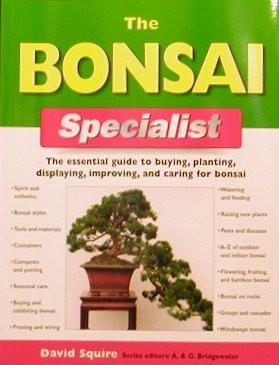 The Bonsai Specialist