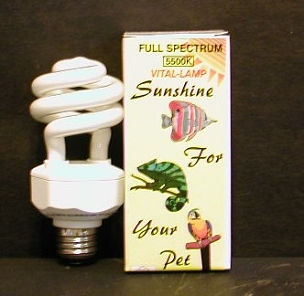 Compact Fluorescent Full Spectrum Bulb