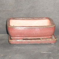 Red Rectangular Pot & Tray