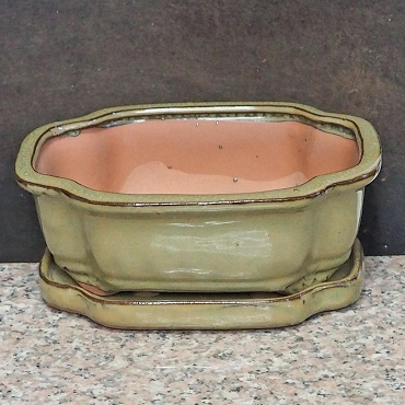 Light Green Rectangular Pot & Tray