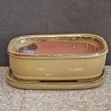 Mustard Green Rectangular Pot & Tray