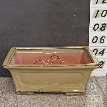 Mustard Green Rectangular Pot
