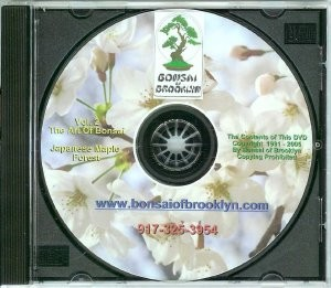 Japanese Maple Forest-DVD